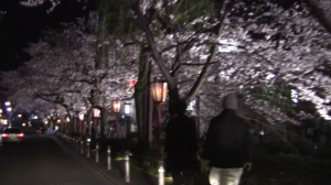 Kiya-machi-dori (木屋町 ) and the Takase River at Night in Kyoto!