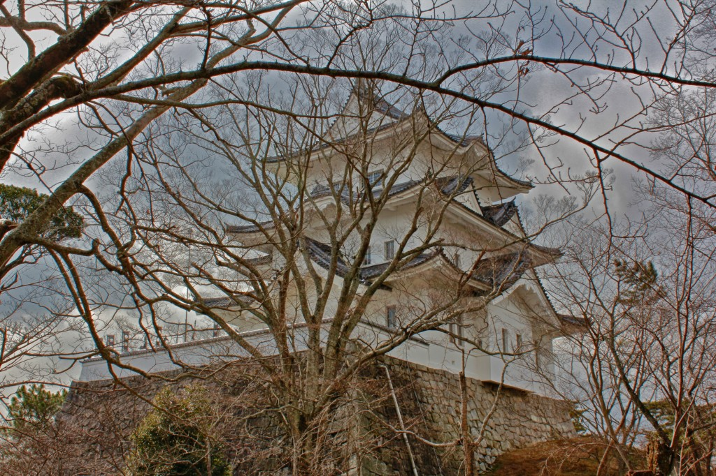 Iga-Ueno Castle: The White Phoenix of Iga City!