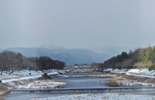"The ""Wild Duck River"" of Kyoto: Kamogawa!"